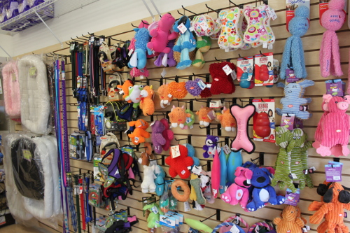 For Pets Only - Toys For Your Furry Friends