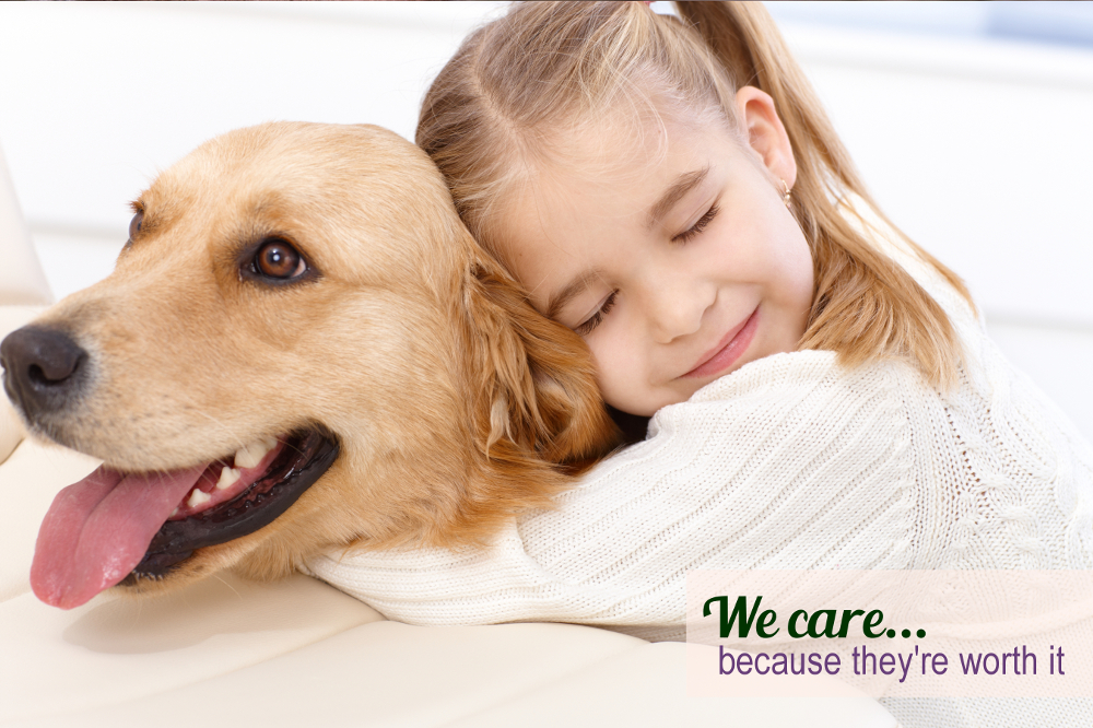 Dog Grooming @ For Pets Only | Girl Hugging Gldn Retriever