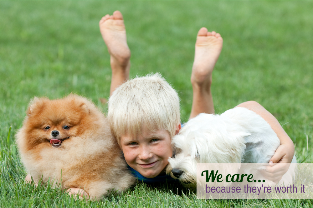 Dog Grooming @ For Pets Only | boy with two puppies